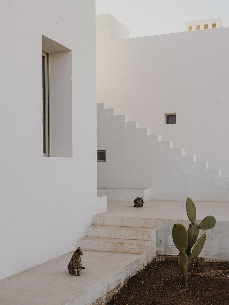 025-villa-cardo-by-studio-andrew-trotter