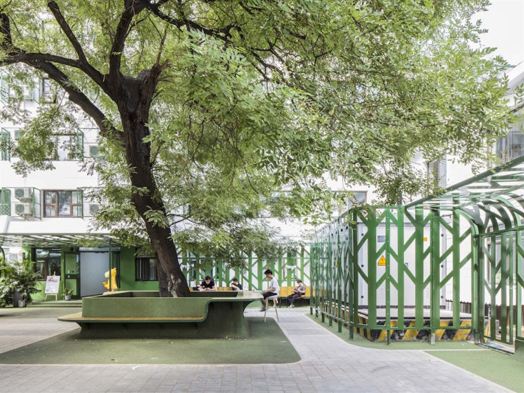 北京大树下的青年社区院子