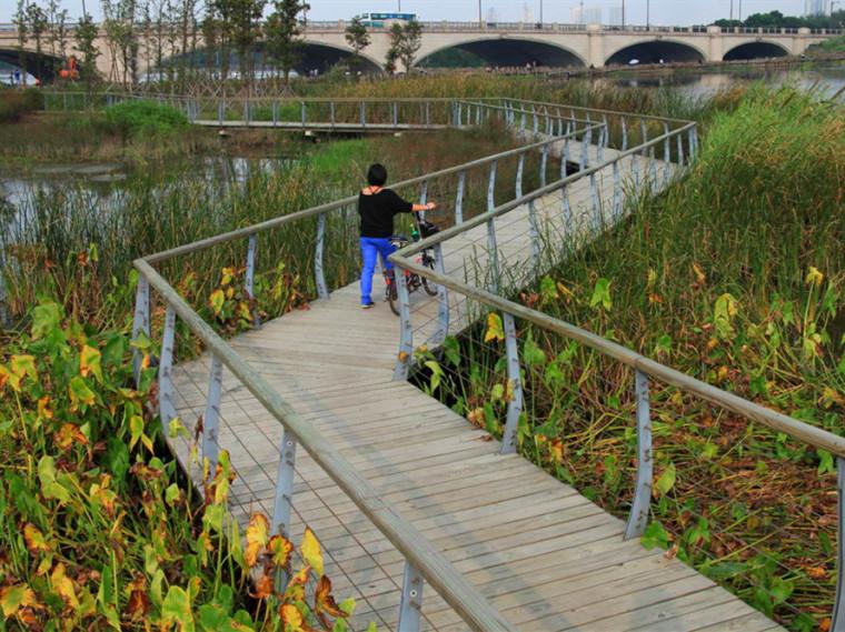无锡长广溪国家湿地公园