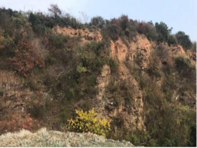 砚台山太湖西山崇明岛工程地质实习报告