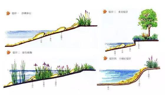 保护水体的设计——驳岸设计