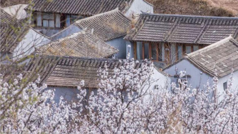 民宿设计丨中式建筑