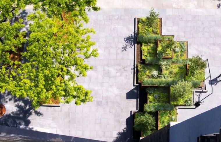 树池,这样设计很精彩!_4