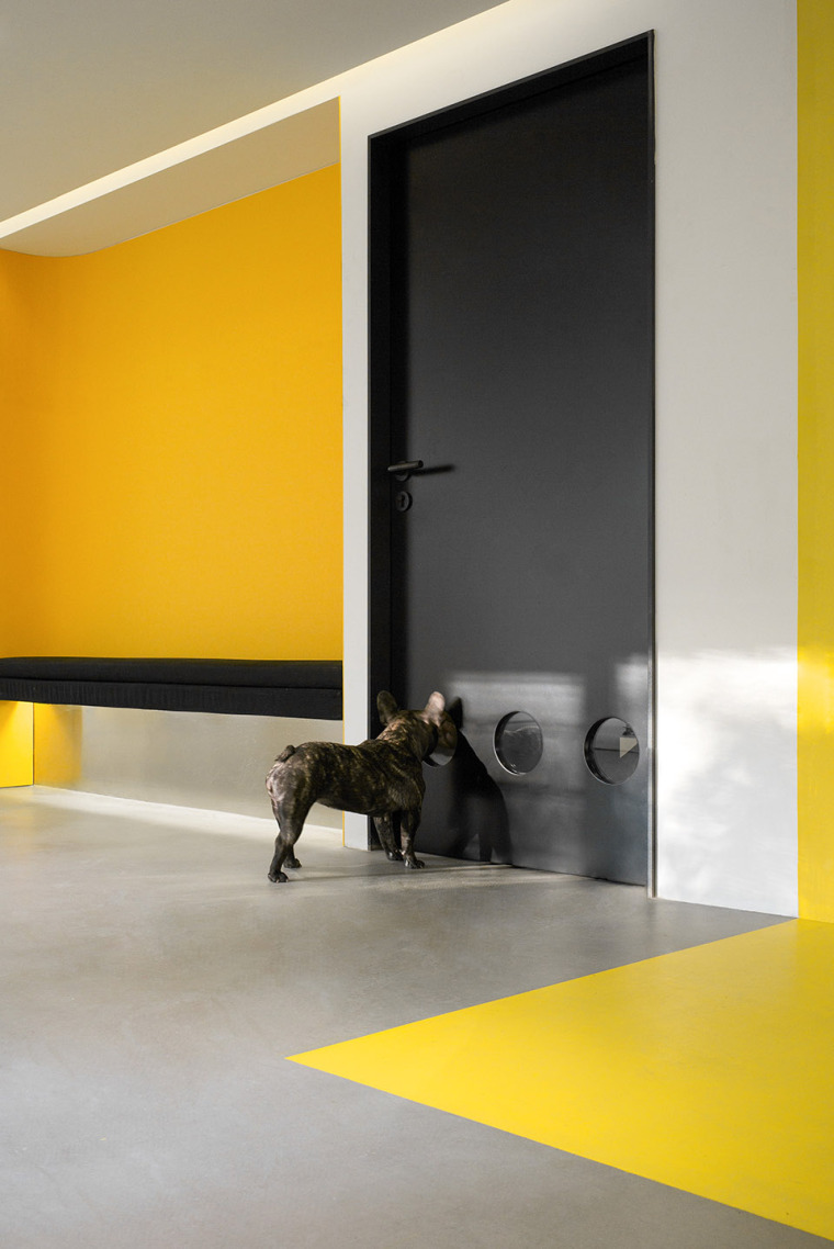 14-nova-pets-china-by-say-architects