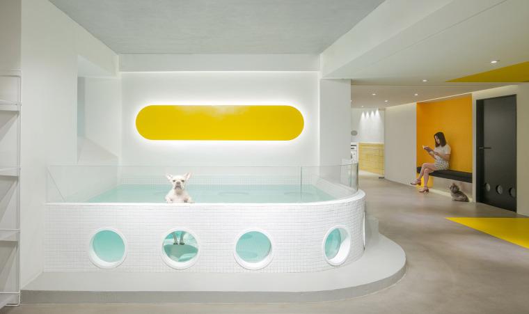 21-nova-pets-china-by-say-architects
