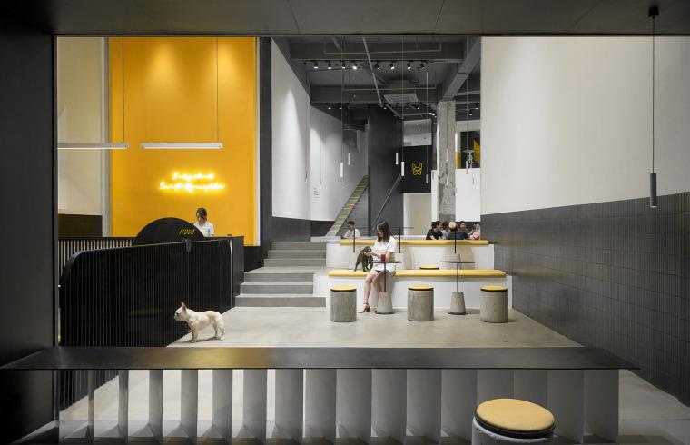 25-nova-pets-china-by-say-architects