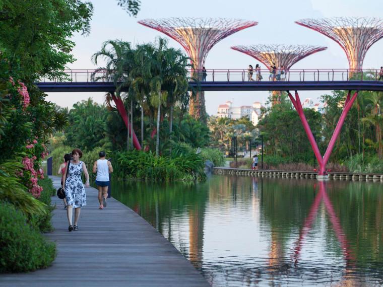 新加坡海湾花园