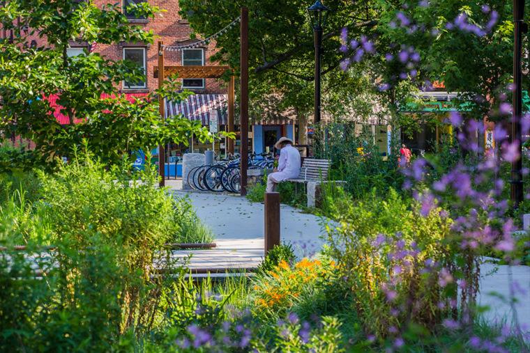006-2018-asla-general-design-award-of-honor-re-envisioning-pulaski-park-by-stimson