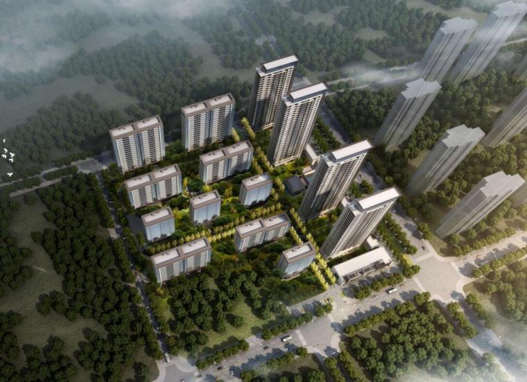 [湖北]现代风格弘阳住宅高层+洋房标投标