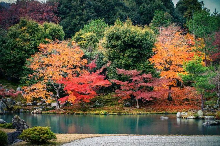 京阪红叶狩|日本庭园·景观·室内考察