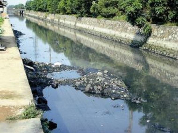 污水灌溉对土壤的污染与防治(清楚明了)