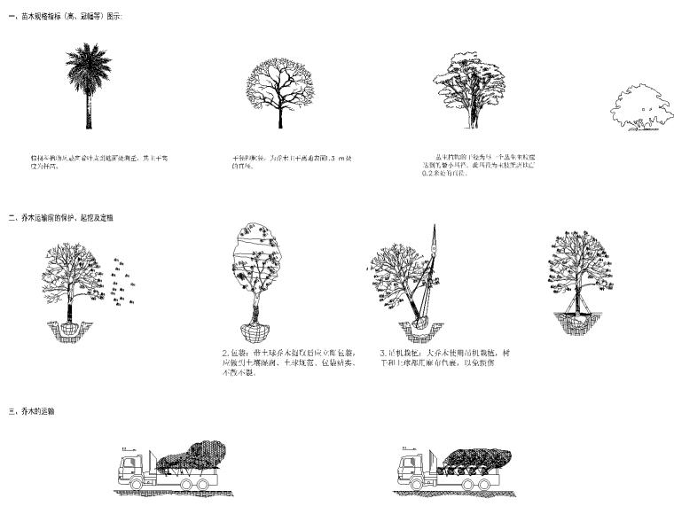 9 种植设计说明_看图王