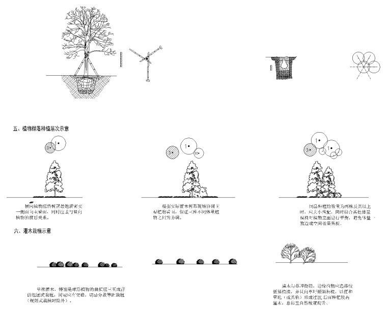 10 种植设计说明_看图王