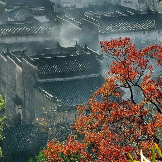 [合集]中国古建之美丨附70套古建&设计资料_228