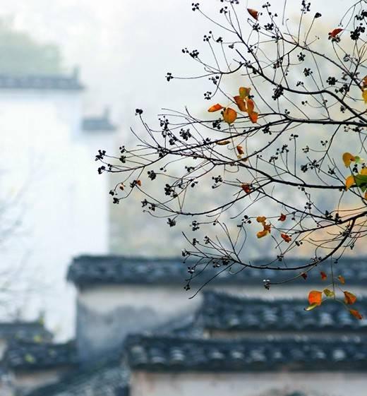 [合集]中国古建之美丨附70套古建&设计资料_197