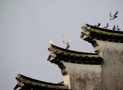 [合集]中国古建之美丨附70套古建&设计资料_224
