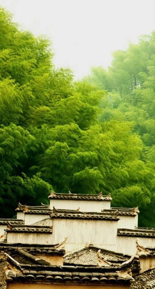 [合集]中国古建之美丨附70套古建&设计资料_225