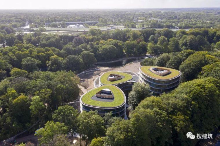 """三个""""椭圆形""""组成的办公大楼"""