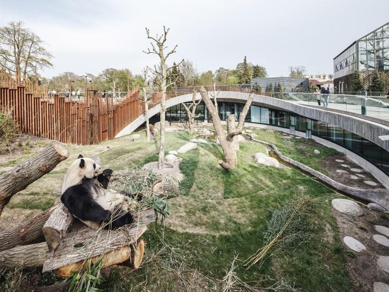哥本哈根动物园熊猫馆
