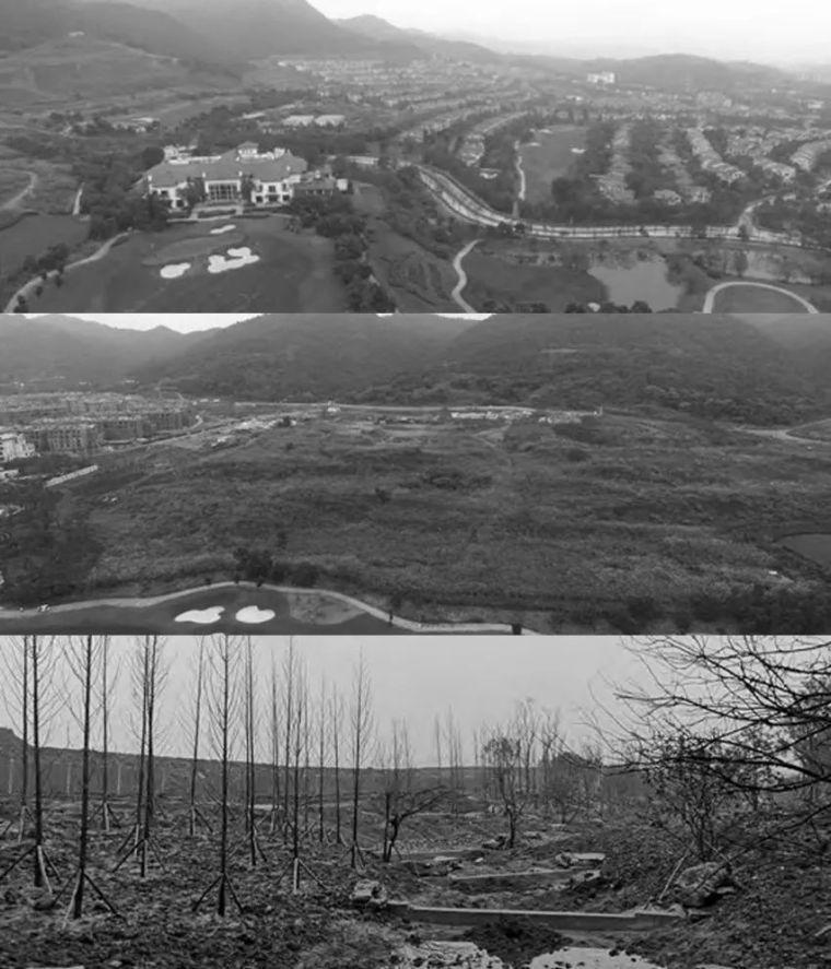 云水山居,藏匿南山的故事