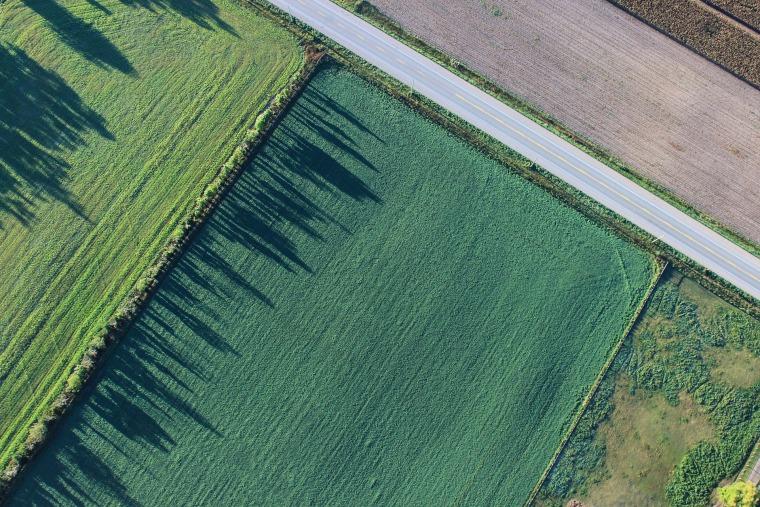 建设高标准农田2422.59亩图纸含标文清单