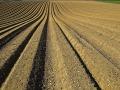 高标准农田建设项目招标文件(含图纸)