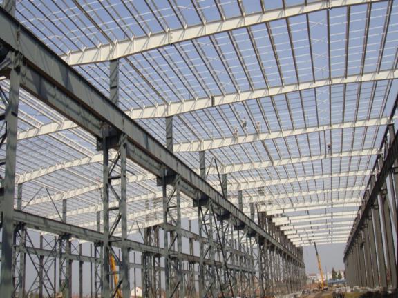 大跨屋盖结构的形式与计算要点