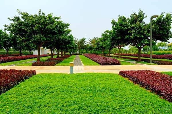 景观绿化工程监理质量评估报告