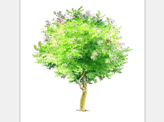 99张手绘树设计配景素材