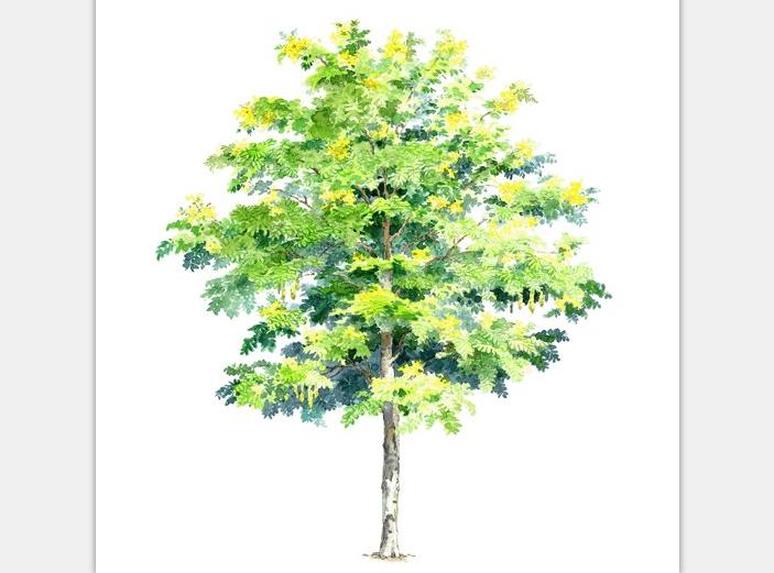 99张手绘树设计配景素材-手绘树设计素材6