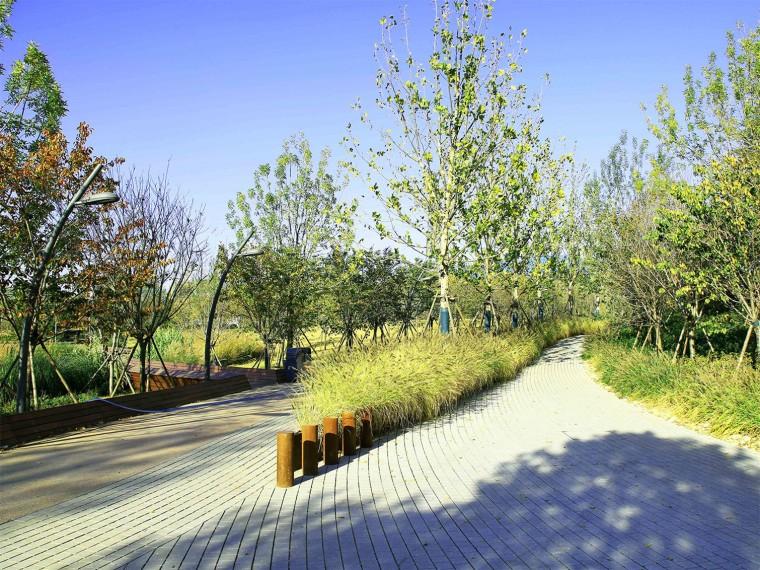 胶州三里河公园