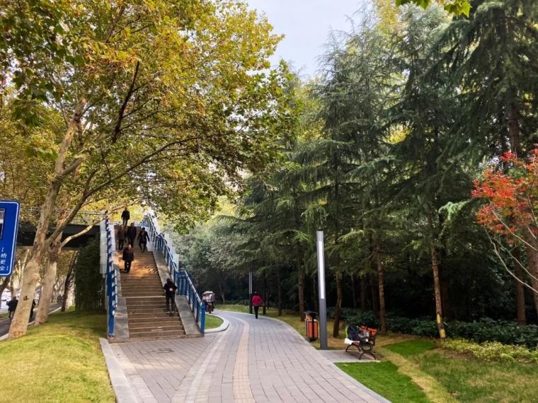 郑州碧沙岗公园