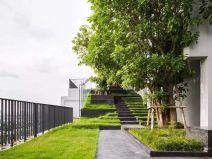 园林景观设计里的线性