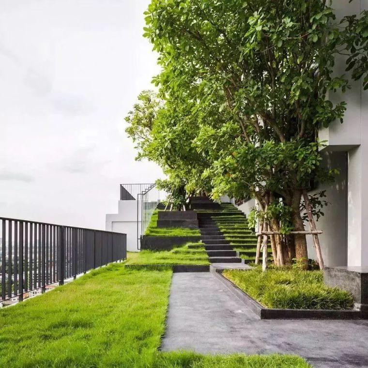园林景观方案设计 | 园林景观设计里的线性