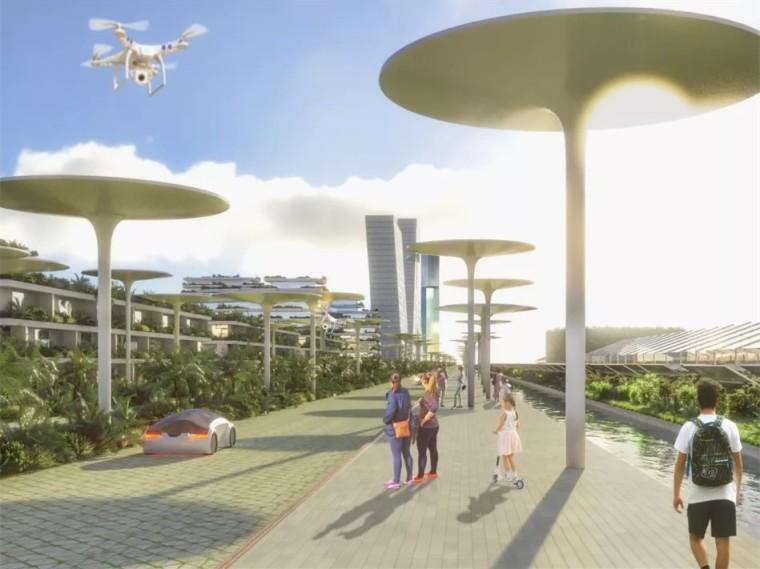 墨西哥首座智慧森林城市总体规划