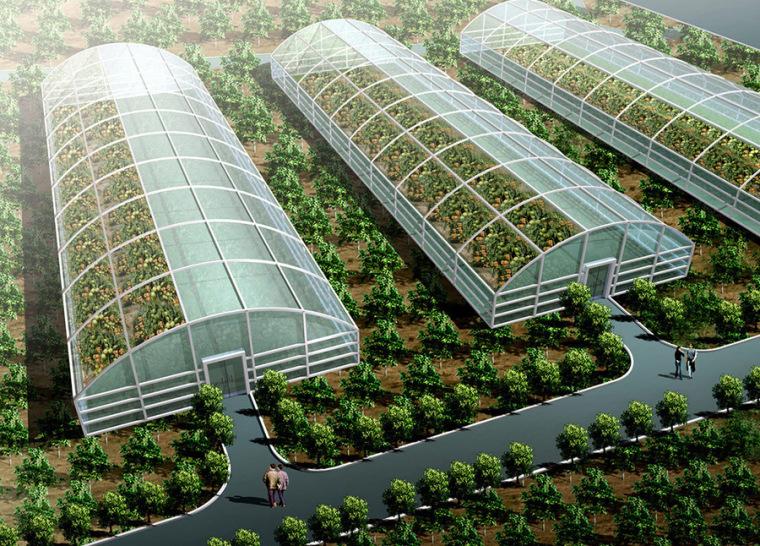 温室大棚.蔬菜大棚.农业生态大棚设计案例效