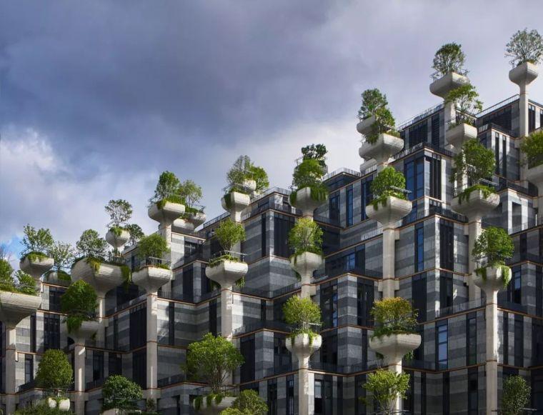 """上海最新地标""""1000棵树""""即将竣工,鬼才设"""