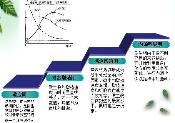 污水的活性污泥法处理讲义ppt(54页)
