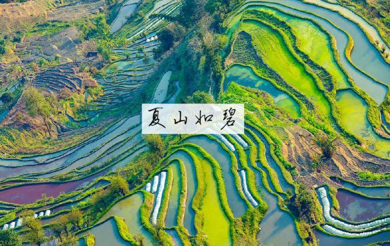 开满鲜花的院子 昆明中国铁建•山语桃_2