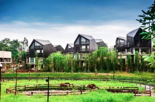 中国最受欢迎的35家顶级野奢酒店_53