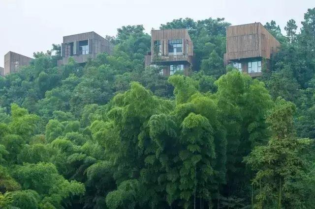 中国最受欢迎的35家顶级野奢酒店_103