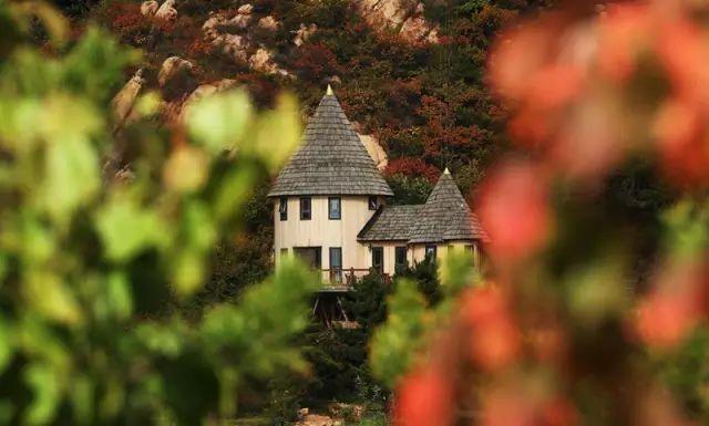 中国最受欢迎的35家顶级野奢酒店_137