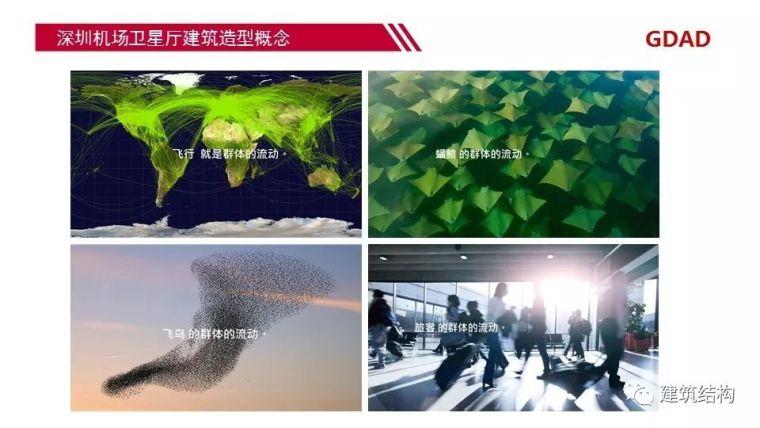 深圳机场卫星厅结构优化设计_4