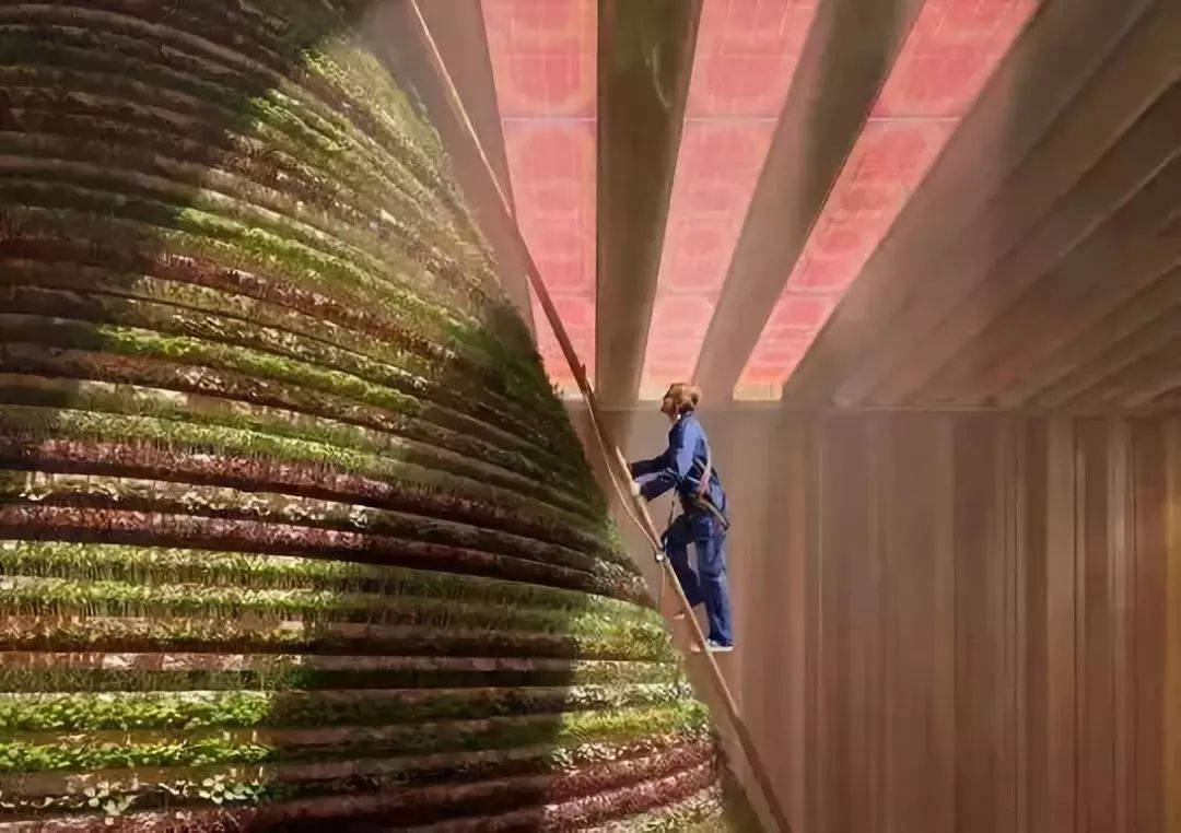 2020迪拜世博会,最新各国展馆建筑设计赏析_52