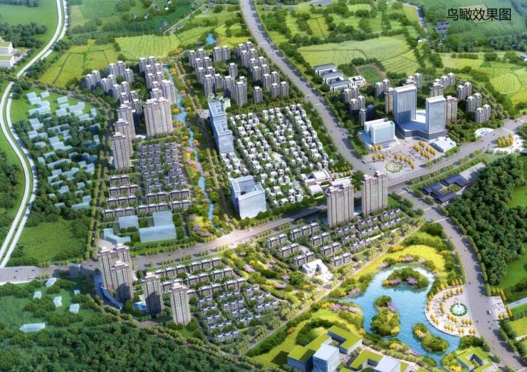 [山东]国际健康科技小镇概念总体规划五
