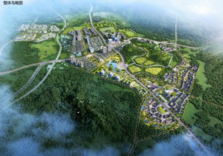 [山东]国际健康科技小镇概念总体规划四