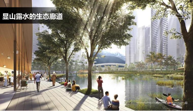 [四川]成都国际滨江生态小镇规划方案文本