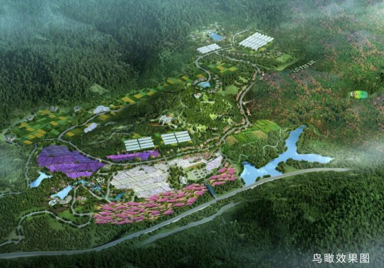 [四川]康养文化乡村旅游产业园概念性规划