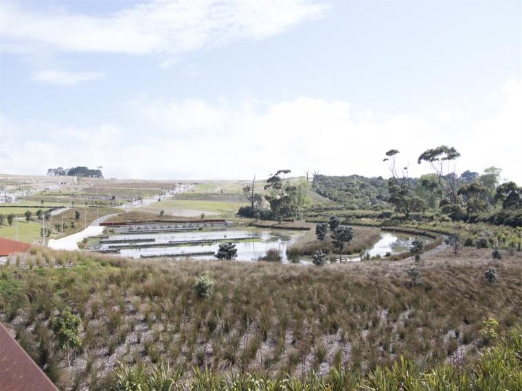 新西兰沃恩斯河走廊湿地