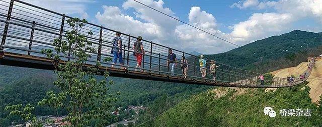 山火后的重建,美国加特林堡人行天桥